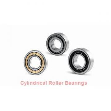 105 mm x 160 mm x 26 mm  FAG N1021-K-M1-SP cylindrical roller bearings