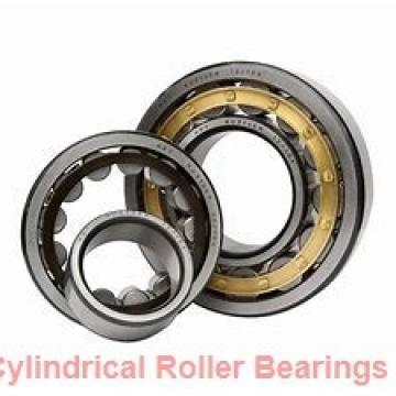 190 mm x 320 mm x 128 mm  SKF C 4138-2CS5V/GEM9 cylindrical roller bearings