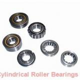 35 mm x 100 mm x 25 mm  CYSD NJ407 cylindrical roller bearings